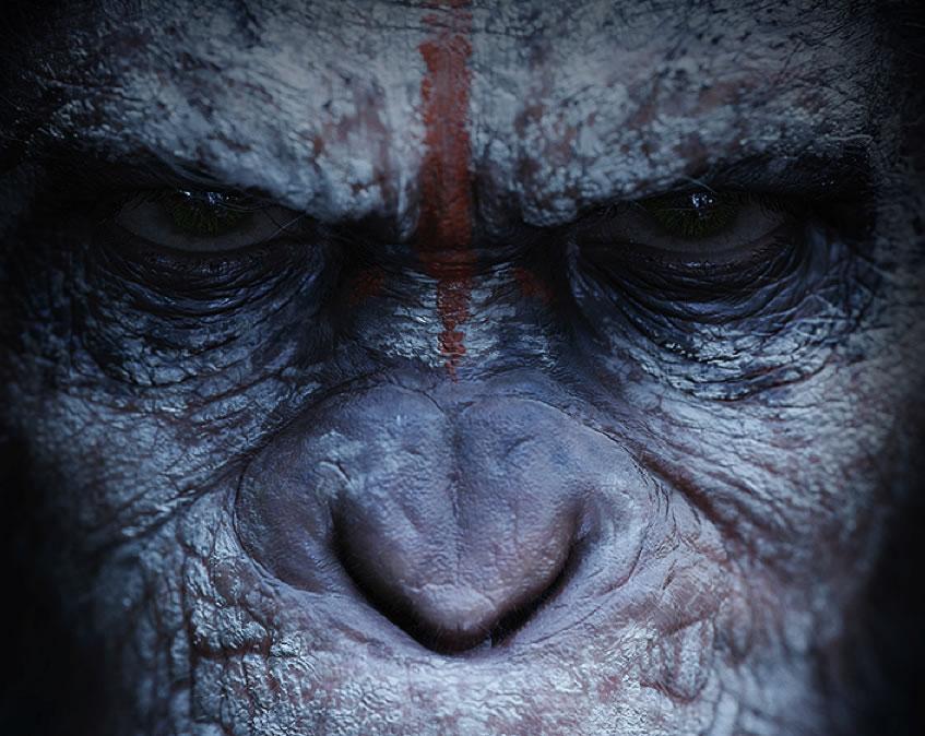 La planète des singes 2014
